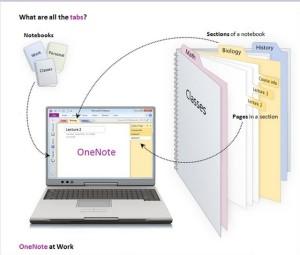 Организация программы OneNote, фото